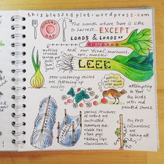 Allotment journal MayP2