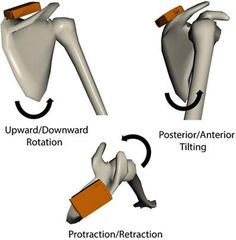 Outcome analysis of arthroscopic treatment of partial thickness rotator cuff tears