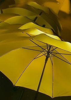 Singing in the Rain by _justin|bess_, via Flickr
