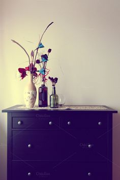 Drawer by The Jungle Photo on Creative Market