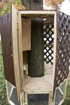 Tree hugger coop: This unique coop is built around a tree, and has three different levels for the chickens. | 6 Crazy Chicken Coop Designs | Living the Country Life | http://www.livingthecountrylife.com/animals/chickens-poultry/6-crazy-chicken-coop-designs