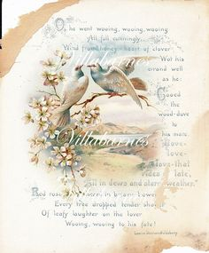 1800's Wedding Book Page Colorful Bird Graphic Poem by villabarnes, $2.25