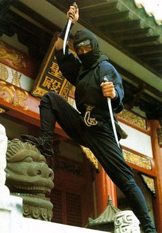 Who is also secretly a ninja? I secretly watch ninja movies