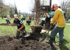 Iowa State student David Ortiz, left, and Iowa State groundskeeper Brady Streit plant a tree near Ross Hall on Thursday as part of Earth Week celebrations on campus. In 2015, Iowa State planted nearly 400 new trees. Photo by Sarina Rhinehart/Ames Tribune  http://amestrib.com/news/iowa-state-trees-transform-campus-treasures
