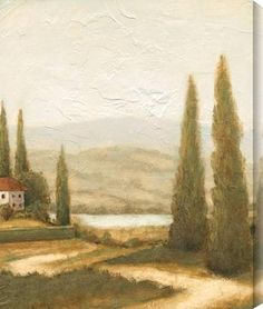 This painting really shows composition. The main parts of the drawing are on the outside, not the middle, the horizon doesn't cut the picture in two, it isn't rigidly symmetrical, and it breaks the monotony of horizontal lines with the vertical trees, and the road and red roof subtly draw your eyes to the house. I like this picture because i am visually attracted too it. i love the mountains and really like how the light mountains in the background look.