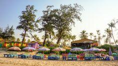 How to Live on the Beach, Arambol Goa