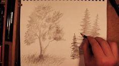 draw pine tree - YouTube