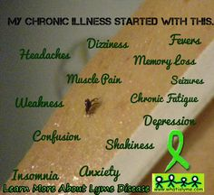What you can Pin for the 2014 Lyme Awareness Campaign | What is Lyme Disease?