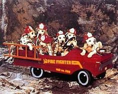 Dalmation Pups In Fire Truck Poster 20x16