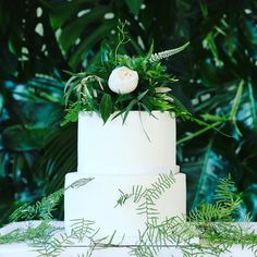 When the cake had to have a Botanical influence - thanks to @littlejakescakes for coming up trumps with the cake to decorate for our photoshoot with @beunveiledwedds @atelierweddings @fourgablesfood @ashvideography @fiestafields01