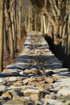 stone fence Fence Gate, Fences, Stone Fence, Stone Walls, House 2, Building Materials, Pathways, Stairways, Outdoor Ideas