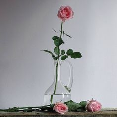 Saturday roses Have a lovely one ♡