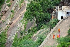 Pilgrimage / Monkey Temple Galwar Bagh / Jaipur / Rajahstan / India