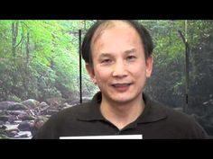 100 Days of Spring Forest Qigong - an Energy Tip from Master Chunyi Lin