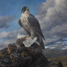 Jaktfalk og fjellrype. 2006, olje (90x90)