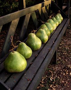 Lori at first I thought they were pears... but I actually think they are gourds... but they sure LOOK like pears and it's a great photo!!!