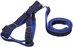 Eugenes Dogs and Cats Leash and Harness Durable Nopull Perfect for travel walking jogging Perfect pet control *** You can get additional details at the image link.Note:It is affiliate link to Amazon.