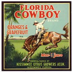FLORIDA COWBOY Vintage Kissimmee Florida Citrus Crate Label, 7x7