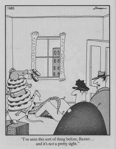 """The Far Side"" by Gary Larson. Far Side Cartoons, Far Side Comics, Funny Cartoons, Funny Nurse Quotes, Nurse Humor, Funny Memes, Hilarious, Nursing Memes, Funny Nursing"