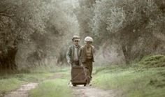 GAEA, the Greek food brand, has produced a captivating short film about the olive groves of Crete and the stories of the people who take care of them - released in tandem with a limited edition luxurious gift box. Greek Olives, Greek Language, Harvest Season, Fresh Milk, Fall Is Here, Olive Tree, Film Stills, Crete, Bradley Mountain