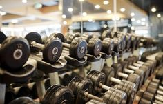Rows of metal dumbbells on rack for strength training in gym - Buy this stock photo and explore similar images at Adobe Stock Protein, Bend At The Waist, Perfectly Timed Photos, Pull Up Bar, Breath In Breath Out, At Home Workouts, Arm Workouts, Having A Bad Day