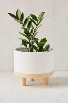 """Urban Outfitters Liv 8"""" Footed Planter"""
