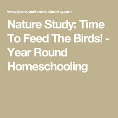 Nature Study: Time To Feed The Birds! - Year Round Homeschooling
