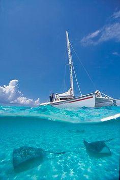 Cayman Islands - Stingray City. Water so warm and clear - amazing.  An adventure you will remember a lifetime!  ASPEN CREEK TRAVEL - karen@aspencreektravel.com