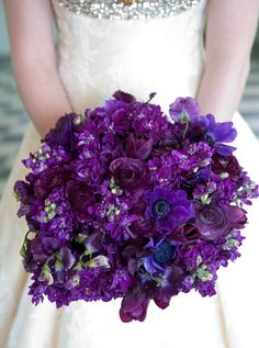 Maybe a little smaller though!!    Google Image Result for http://blog.weddingish.com/wp-content/uploads/7-bold_dark_purple_wedding_bridal_bouquet.png