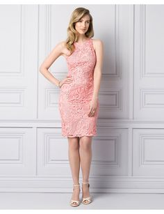 Guipure Lace Shift Dress - Le Chateau Special Occasion Dresses, I Dress, Going Out, Style Me, High Neck Dress, Bodycon Dress, Fancy, Formal Dresses, Pretty