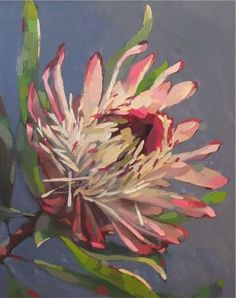 Shop original art created by thousands of emerging artists from around the world. Buy original art worry free with our 7 day money back guarantee. Protea Art, Protea Flower, Australian Native Flowers, Oil Painting Pictures, Original Art For Sale, Botanical Art, Canvas Artwork, Art Oil, Flower Art
