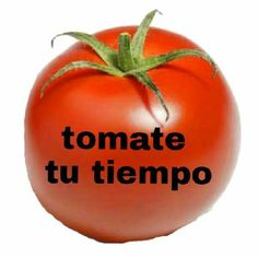 Que te importa Funny Spanish Memes, Spanish Humor, Meme Pictures, Reaction Pictures, Cute Memes, Dankest Memes, Foto Meme, Foto Top, Love Phrases