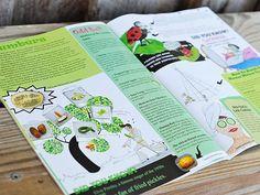 Amazing Seeds Kid's Magazine