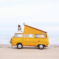 "findmomo: "" Oh yeah! This is Texas! Come join us, we're partying on the beach tonight.  (at Rollover Pass) "" Follow The Leader, Van Life, Camping Places, Brick, All I Want, Butter, Explore, Australia, Snow"