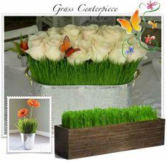 grass roses