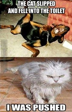 Tee Hee I can so see this with Lilly/Guinness and Max
