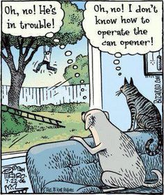 Cats and dog humor Cartoon Jokes, Cat Jokes, Funny Cartoons, Funny Comics, Funny Memes, Hilarious, Cartoon Cats, Funny Quotes, Memes Humor