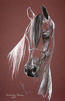Horse Drawings, Animal Drawings, Art Drawings, Horse Sketch, Horse Artwork, Equine Art, Pastel Art, Horse Pictures, Art Sketchbook