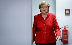 The media learned about the plans for Merkel to propose new sanctions against Russia