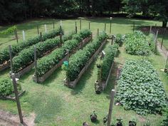 20 Inspiring Homestead Farm Garden Layout and Design Ideas #gardeninglayout #OrganicFoodLayout