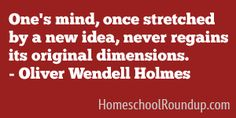 """""""One's mind, once stretched by a new idea, never regains its original dimension.  ~Oliver Wendell Holmes"""