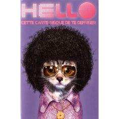 Carte Pets Rock Hello cette Carte risque de te Défriser - Cadeau Maestro