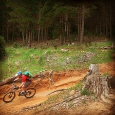 Downhill 4 - Tokai forest, some awesome jumps await. Travel Center, Cape Town, Mountain Biking, Centre, Cycling, Passion, Tours, Bike, Photo And Video