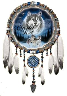 Cherokee Pride with a Wolf and dreamcatcher Native American Cherokee, Dream Catcher Native American, Native American Pictures, Native American History, Native American Indians, Cherokee Indians, Cherokee Nation, Beautiful Dream Catchers, Dream Catcher Art