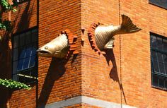 Portland Usa, More Pictures, Salmon, United States, The Unit, Sculpture, Street, Outdoor Decor, Travel