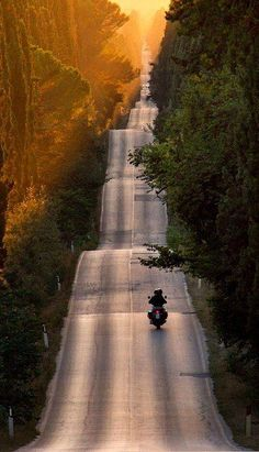 Tuscany by motorbike Picture by Roberto Nencini — at Bolgheri - Toscana. https://www.facebook.com/photo.php?fbid=644018765652214&set=a.172549866132442.49234.165198970200865&type=1&theater