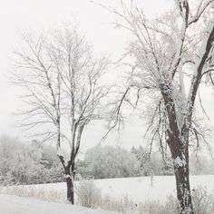 La grosse neige de samedi passée ❄️ Maintenant il pleut ☔️ Vive le Québec! #bipolarseasons #lifeinQuébec #springtime #onlyinCanada
