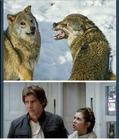 Han & Leia Star Wars meme