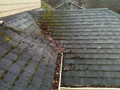 Removing moss from your roof not only improve its appearance but also increase the life span of your roof. Connect with skilled roofing contractors @ http://www.hirecontractor.com