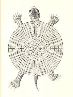 Turtle Labyrinth -- this labyrinth is constructed on private property in Arroyo Grande, California; the actual labyrinth is 102 feet in diameter.